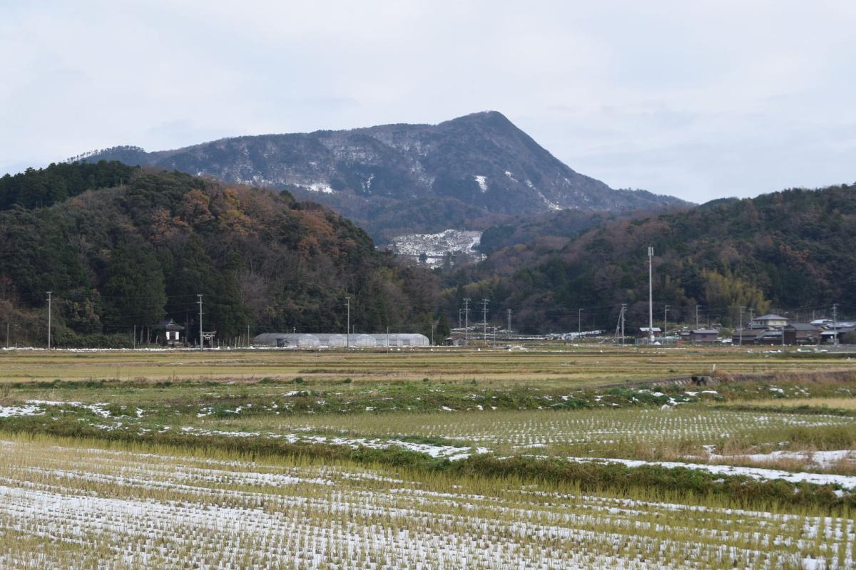 依遅ヶ尾山