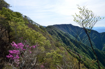 中内山から権田山・勘場山