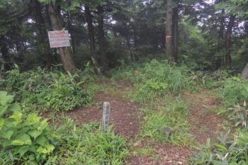 仏ヶ仙の山頂(標高743.5m)