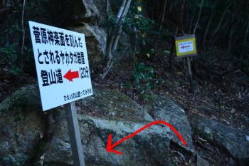 ヤカタガ岩屋分岐