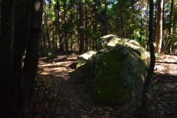 南側登山口からの道