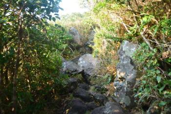 岩がゴロゴロとした道