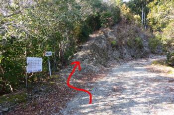 林道から登山道