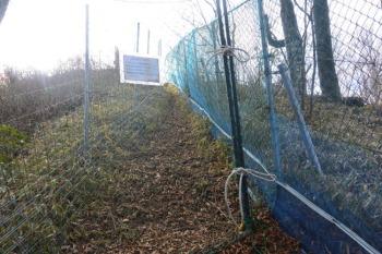 鹿除けのネット
