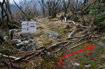 樅木登山口方向