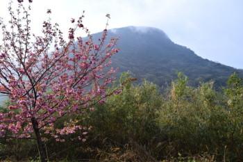 香春岳 (三ノ岳)