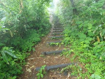 擬似木段の急坂