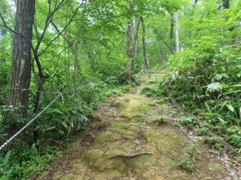 急坂の登山道