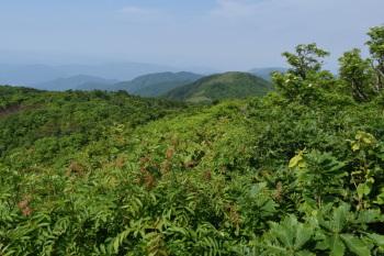 大日山の眺めです。その2