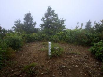 野道山の山頂(標高924.2m)