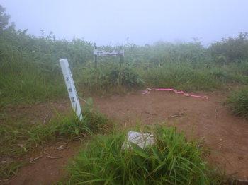 三ツヶ峰の山頂(標高969.4m)