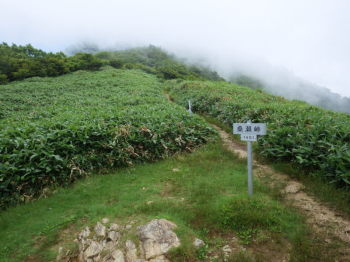 桑瀬峠(標高1451m)