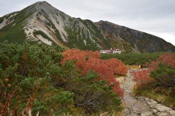 三俣山荘のテント場