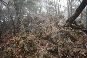 岩場の急坂