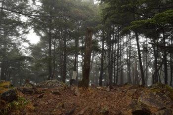 飛龍山の三角点地点(標高2069.2m)