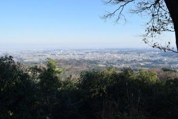 日和田山の眺め