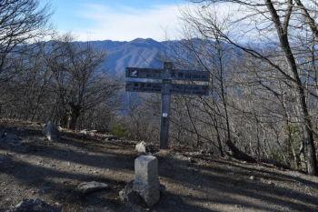 大持山の山頂(標高1294.1m)