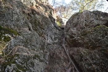 岩場の基部