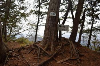 帳付山の山頂(標高1619m)