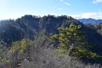 三笠山から見た諏訪山