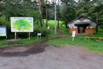 一本杉園地キャンプ場