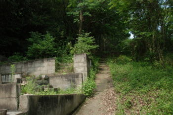 墓地の中の道