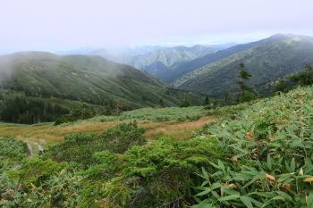 山頂付近の眺め