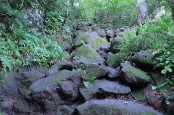 岩や木の根の露出した急坂