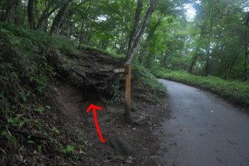 車道から登山道
