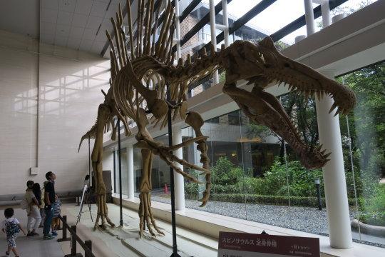 大恐竜展01