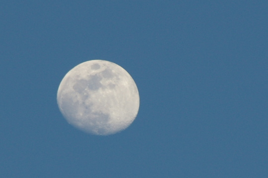 moon0130